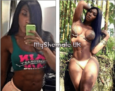 Shemale escorts with Xl cocks