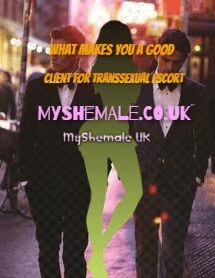 What makes you a good Client For Transsexual Escort
